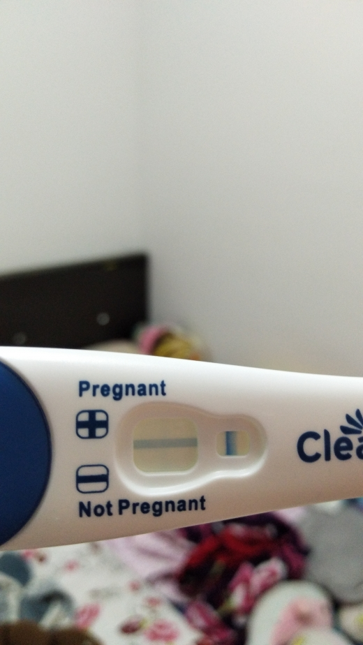 Clearblue Plus Pregnancy Test (Gallery #4548) | WhenMyBaby