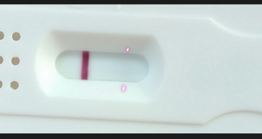 New Choice (Dollar Tree) Pregnancy Test (Gallery #4661