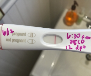 Pregnancy Test 283 First Response Early