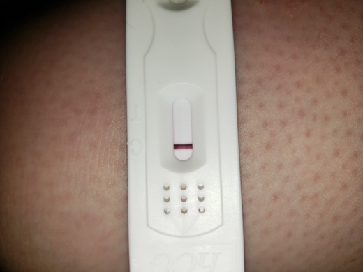 Home Pregnancy Test