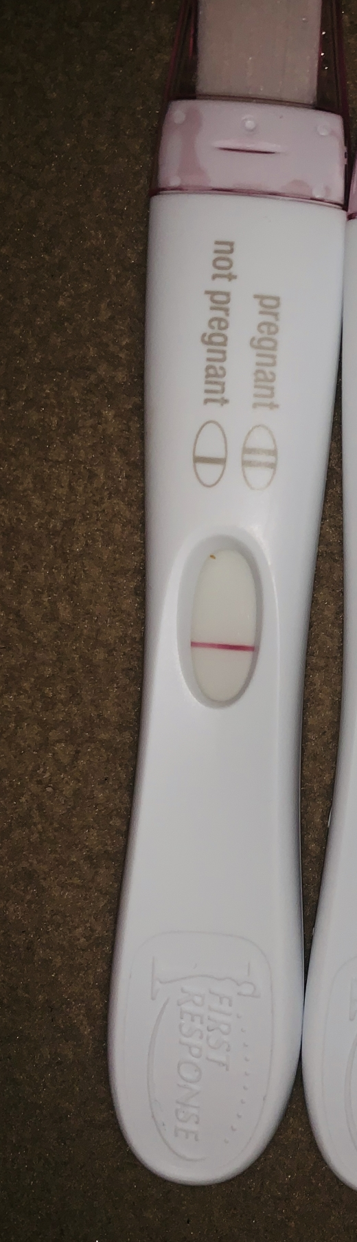 First Response Rapid Pregnancy Test, 7 DPO