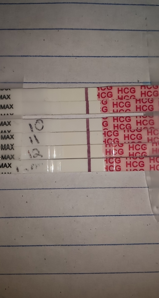 Wondfo Test Strips Pregnancy Test, 12 DPO, FMU